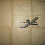 Franny-Swann-Conundrum-dragonfly